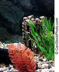 Aquarium - Detail of inside underwater decor within a ...