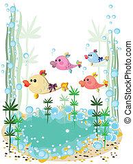 aquarium, fish.