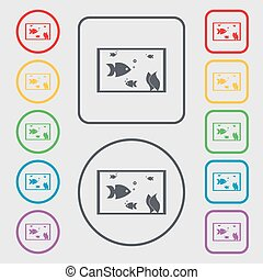 Aquarium, Fish in water icon sign. Symbols on the Round and square buttons with frame. Vector