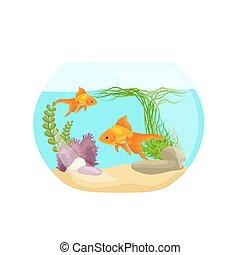 Aquarium fish, seaweed underwater, marine animal isolated on...