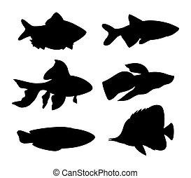 Aquarium Fish Silhouette Set Vector Illustration - Aquarium...