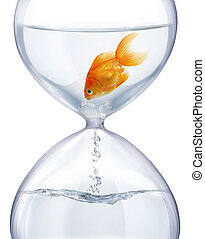 Aquarium hourglass. - It symbolizes the transience of time ...