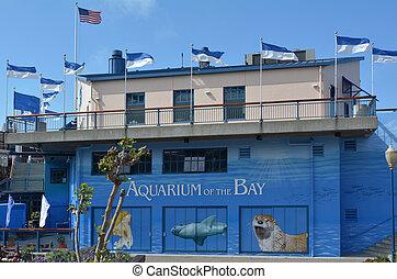 Aquarium of the Bay in San Francisco - California