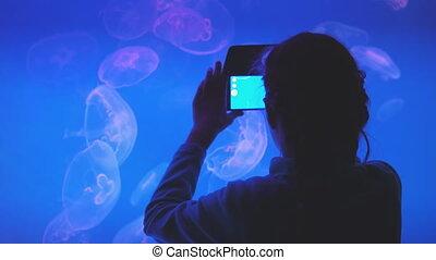 aquarium., photos, petite fille