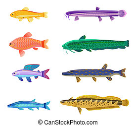 Aquarium Tropical Fish Set Vector Illustration