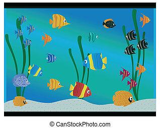 Aquarium with different fish