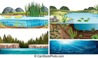 Aquatic ecosystems with pond, lake, river illustration
