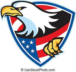 aquila, americano, calvo, bandiera, scudo
