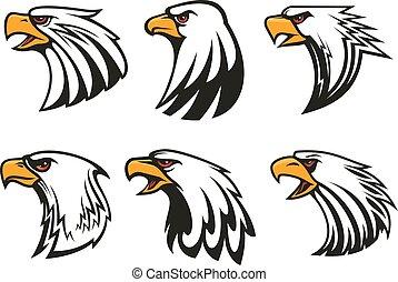 aquila, icone, set., calvo, emblemi, vettore