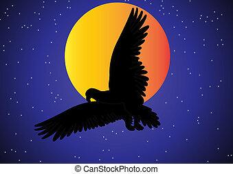 aquila, in, il, cielo, sullo sfondo, di, luna