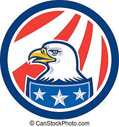 aquila, testa, calvo, bandiera americana, retro, cerchio