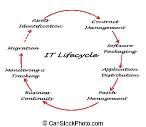 aquilo, lifecycle, gerência