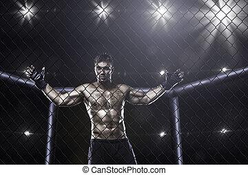 arène, mma, cage, combattant