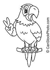 ara, fågel