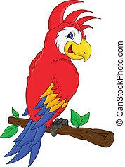 ara, ptak, rysunek