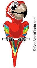 ara, tecknad film, papegoja, röd