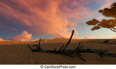 Arab man walking through the desert towards oasis at sunset,...