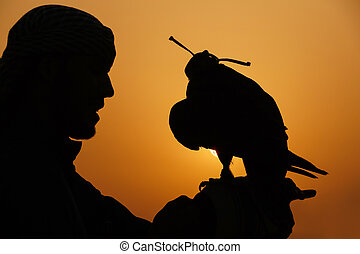 Arab with falcon at sunset