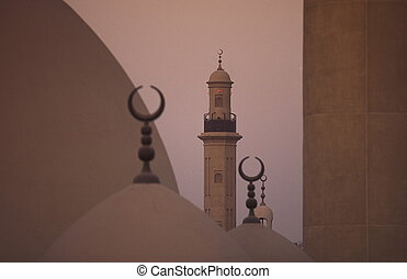 ARABIA EMIRATES DUBAI - a mosque in the Moschee an der Ali...