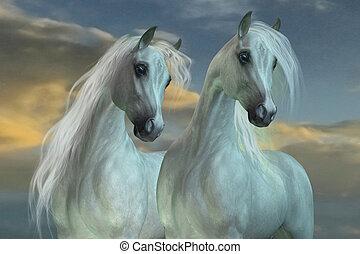 Arabian Brothers - The Arabian horse breed was developed in...
