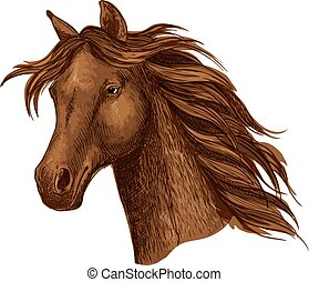 Arabian brown horse race sport emblem