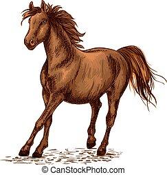 Arabian brown stallion galloping on horse races