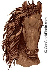 Arabian brown stallion vector portrait