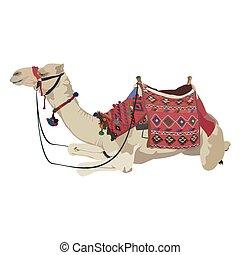 Arabian camel dromedary vector flat isolated illustration