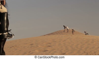 Arabian horse rider riding on desert in Dubai - Arabian...