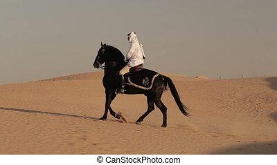 Arabian horse rider riding on desert in Dubai