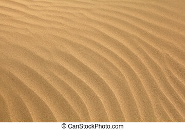 Arabian sand ripples - Wind-blown ripples in sand in the...