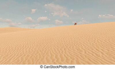 Arabic man and red horse among sandy desert 4K - Arabic man...