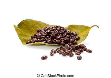 Arabica coffee beans.