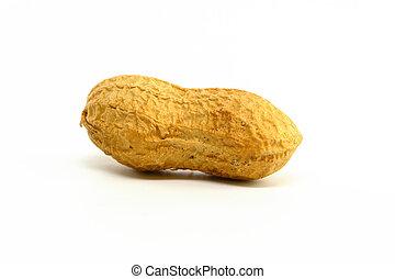 arachide, singolo