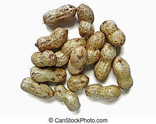 Arachis hypogaea, peanuts