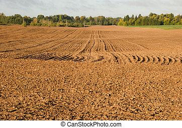 arado, aparejar, field., tierra, marga, otoño, agricultura