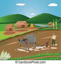 arado, campo, vetorial, desenho, agricultor, paddy