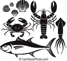 aragosta, mollusco, silhouette, vettore, granchio tonno, frutti mare, gamberetto, set., squid., fish, illustrations.