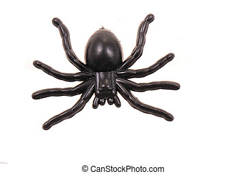 araignée plastique, isolé