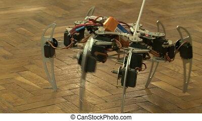 araignés, robot