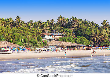 Arambol beach, Goa - Beauty Arambol beach landscape, Goa...