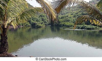 Arambol sweet lake in Goa