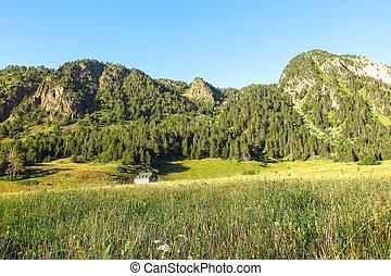 aran, panorama, valle, españa