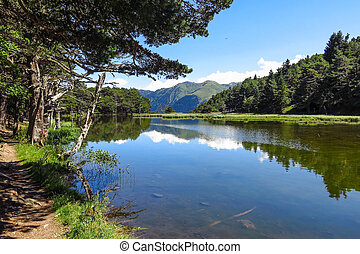 Aran valley in the Catalan Pyrenees, Spain - Panorama to...