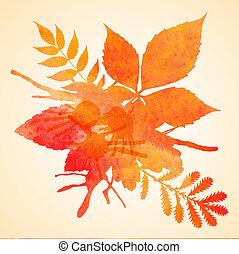 arancia, acquarello, dipinto, vettore, au