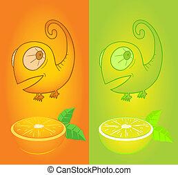 arancia, aroma, limone