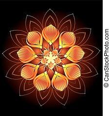 arancia, astratto, fiore