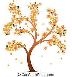 arancia, autunno, albero