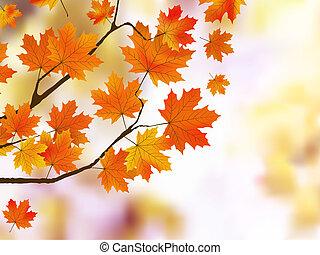 arancia, autunno parte, poco profondo, fuoco.