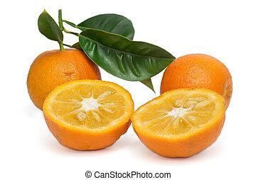 arancia, bianco, amaro
